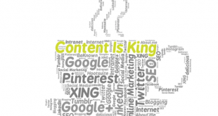 Soziale Netzwerke 310x165 - Onlinemarketing - soziale Netzwerke richtig nutzen